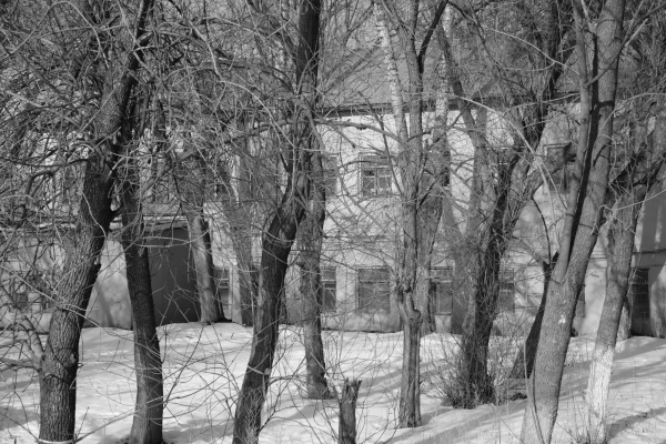 Предполагаемое здание училища. Фото: Михаил Кончиц, архив Общества «Мемориал»